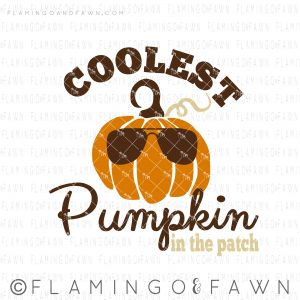 boy pumpkin shirt svg